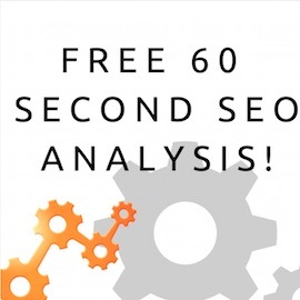 60 second seo analysis